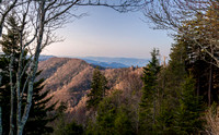 Newfound Gap Vista