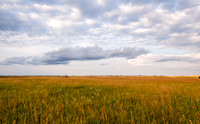 Prairie and Clouds