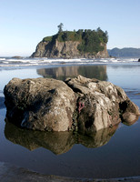 Olympic Coast Low Tide