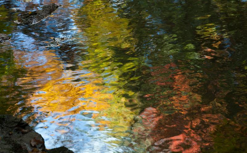 Autumn Reflection 111